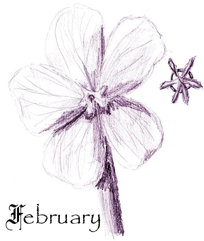 February Chores for Your Georgia Garden
